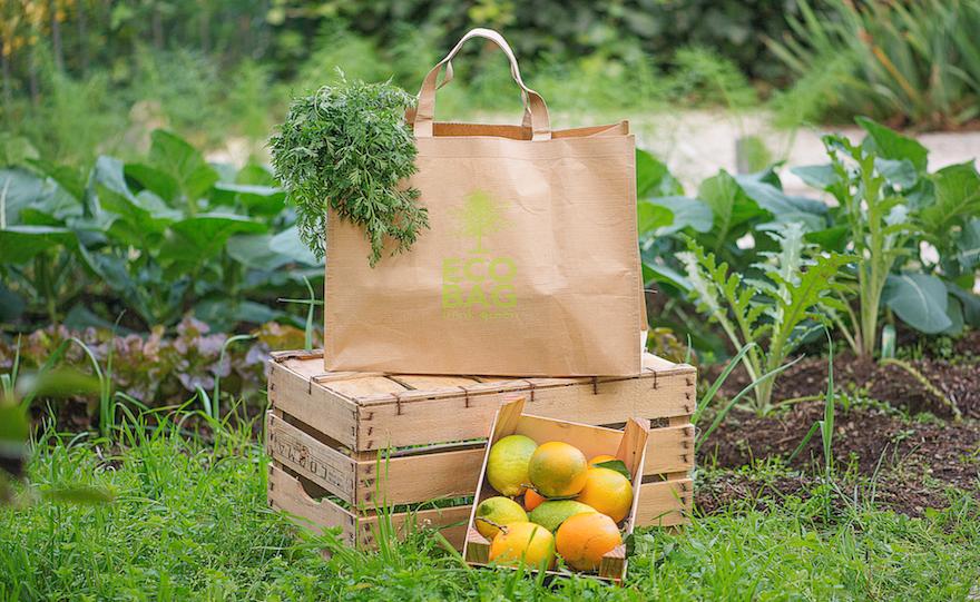 Shopper Ecologica