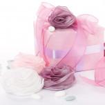 Rosa Tessuto Organza con zip Celeste
