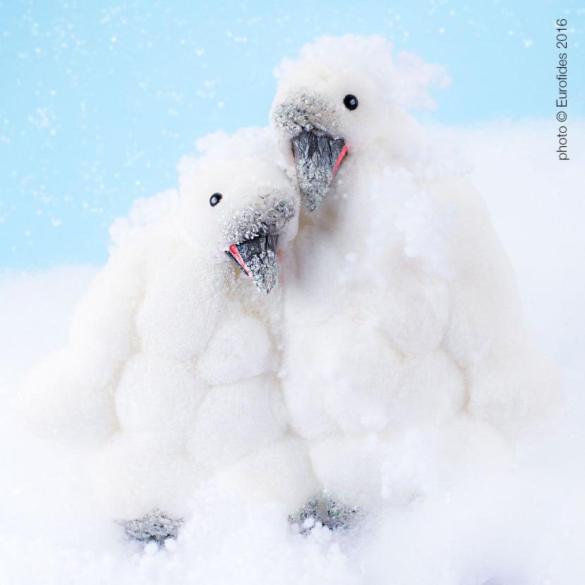Coppia Pinguini di Neve