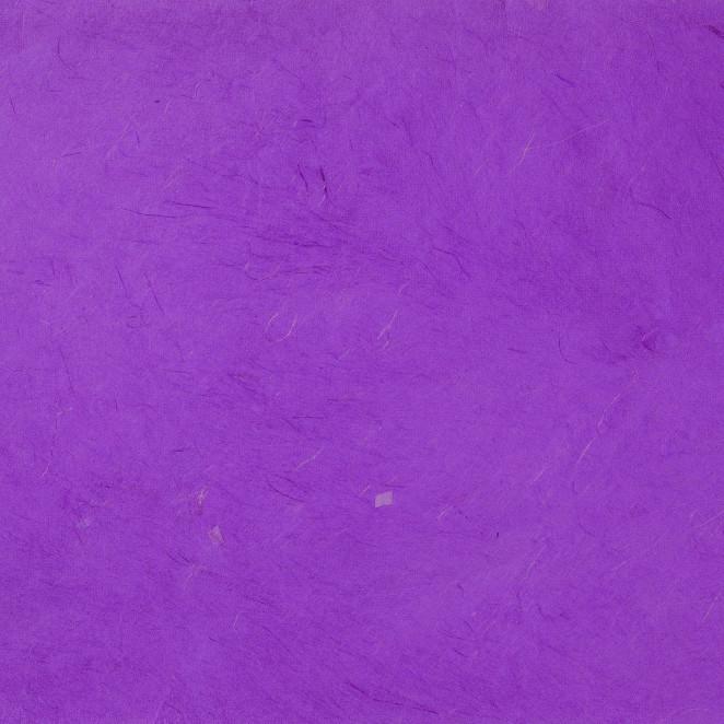 Carta Regalo Fibre Naturali Viola